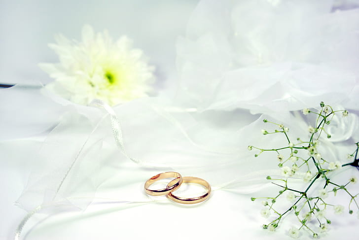 two gold-colored wedding rings