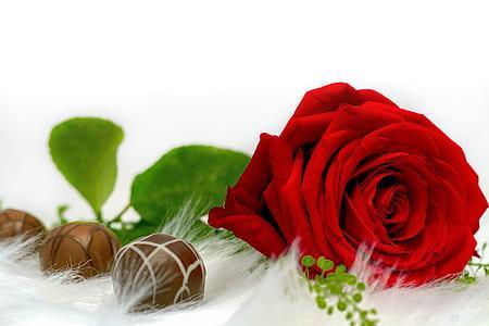 red rose and three chocolate balls