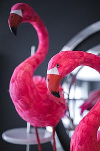 Pink Flamingo Home Decorations 2549x3823