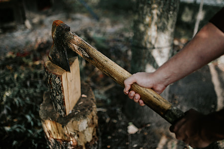 Chopping wood in the forest