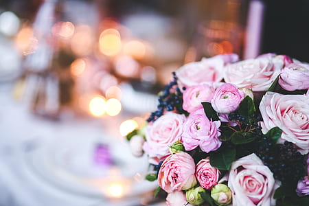 focus photography of pink rose bouquet