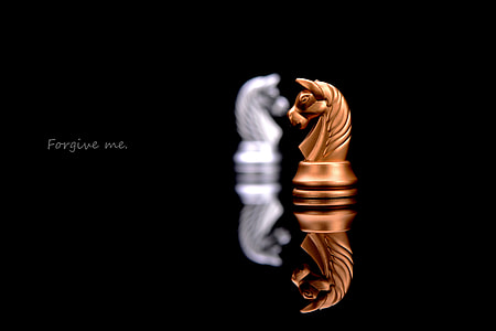close up photo of brown horse chess piece with forgive me text overlay