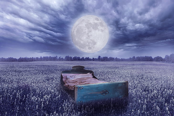 royalty free photo brown bed frame on the field with full moon