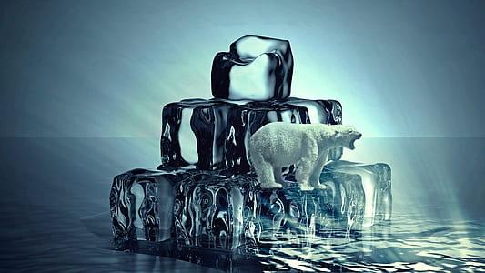 photography of white polar bear on iced cubes