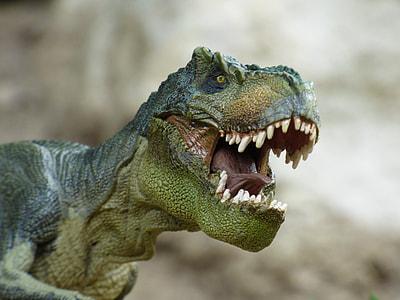 green t-rex toy
