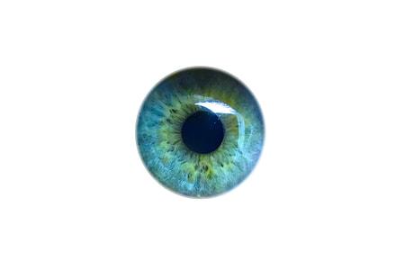 human blue pupil