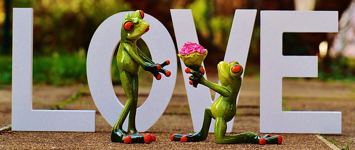 green frogs in front of Love free-standing letters decoration