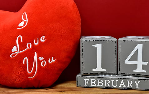 heart-shaped red I love you embroidered pillow beside 14 february free-standing letter