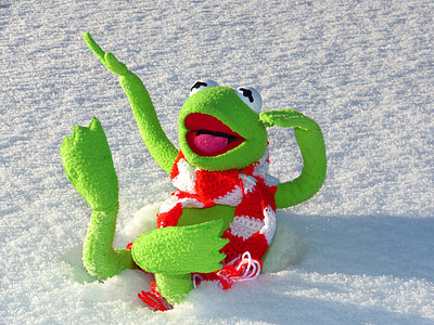 Kermit the Frog lying on snow