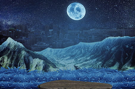 blue grass with mountain and full moon painting