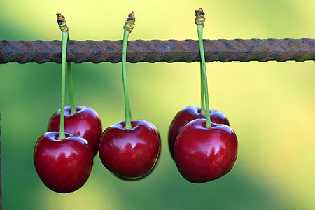 selective focus photography of five red cherries