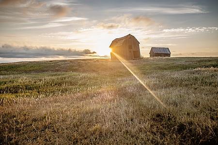 gray shack on grass field