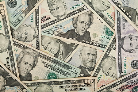 assorted US dollar banknotes