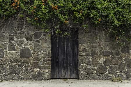 gray door during daytime