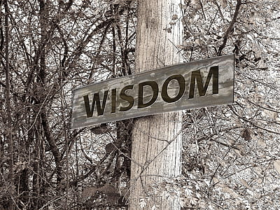 Wisdom signage on wooden post