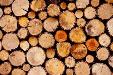 pile of cut log