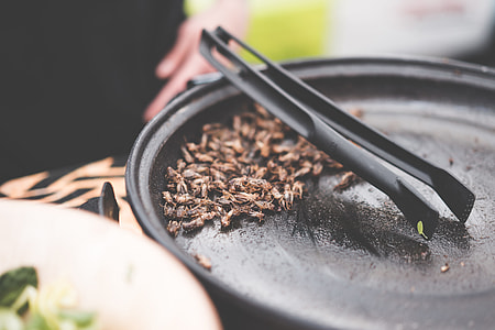 Fried Insects Beetles Traditional Exotic Asian Food
