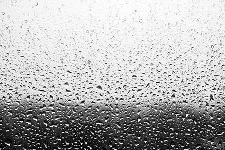 dew on glass panel wallpaper