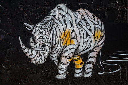 Street art rhino captured on a wall with a Canon 6D DSLR