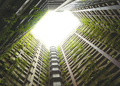 low angle photography of building with green plants