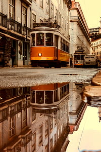 orange and grey train reflection on body of water