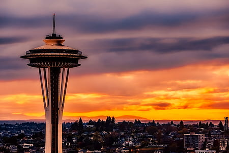 photography of Space Needle