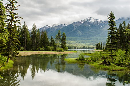 body of water near forest away from mountain during cloudy day photo