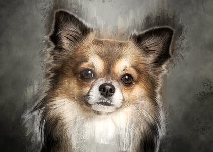 tan dog painting