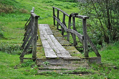 gray wooden bridge covered with moss during daytime