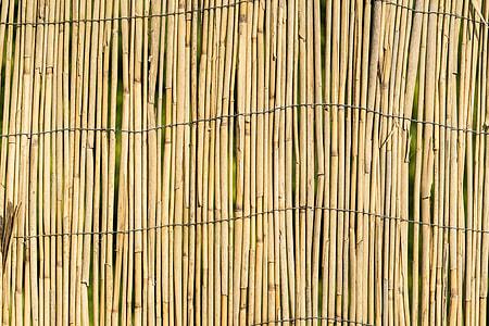 Garden Bamboo Wall Fence Texture Background