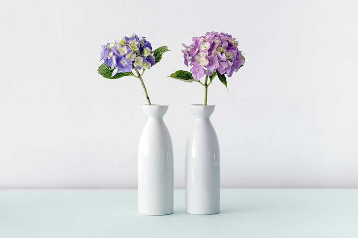 Royalty-Free photo: Two purple and white flowers in vases | PickPik