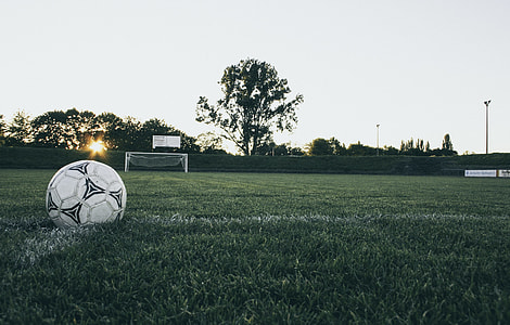 Black and White Soccer Ball on Grass