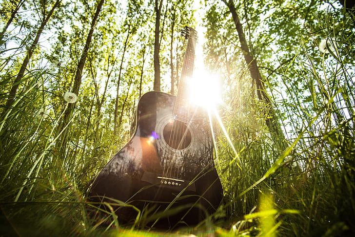 Royalty-Free photo: Acoustic guitar, musical instrument, guitar ...