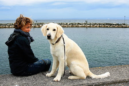 woman sitting on sea dock beside leashed dogf