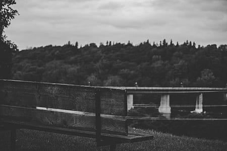bridge, tree, mountain, forest, woodland, bench