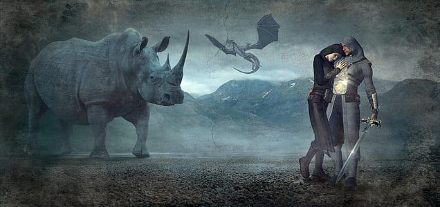 man holding sword near grey rhino painting