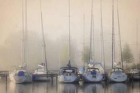 parked five white outboard boats
