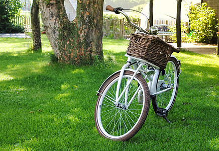 white city bicycle near trees
