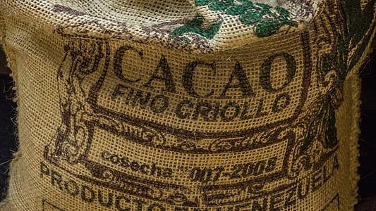 Cacao sack