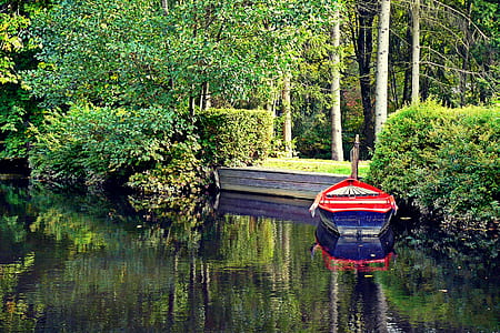 red and blue row boat beside green trees on lake