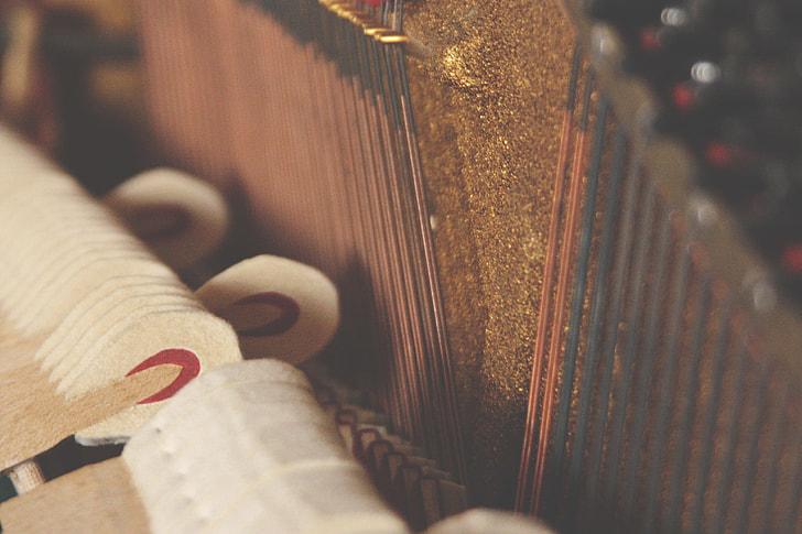 close up, image, piano, interior, instrument, music