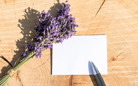 white band paper with pen beside lavender flowers