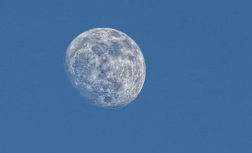 selective focus photo of gray moon