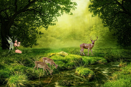 fairy playing float near lake with deer digital wallpaper