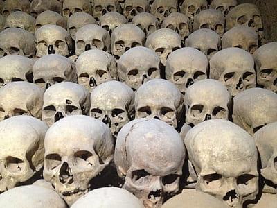 human skull lot