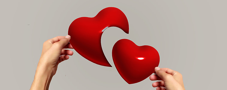 person holding red hearts