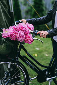 Woman holding a bicycle with beautiful pink flowers in the basket