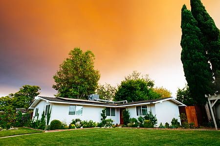 house, sky, tree, structure, grass, building
