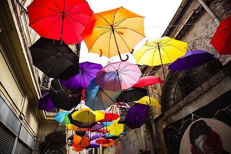 assorted color umbrella