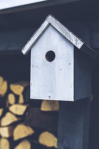 Gray birdhouse